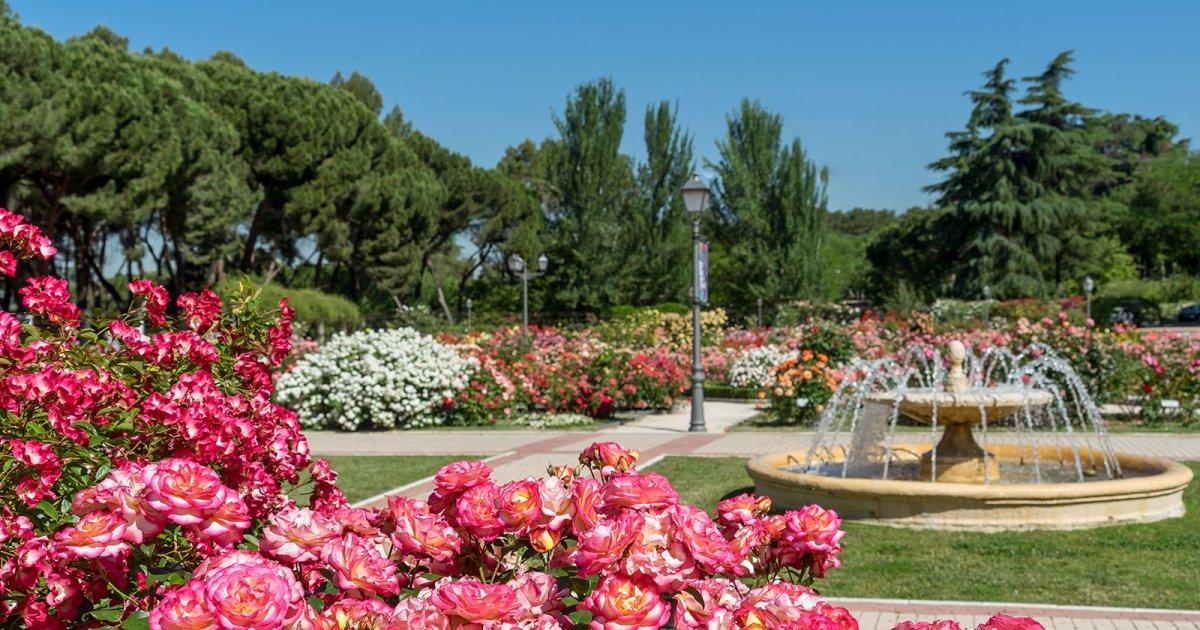 Audioguida giardino botanico madrid it mywowo travel app for Giardino botanico milano