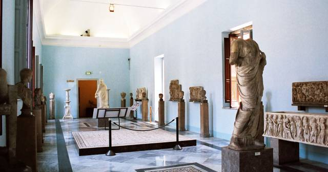 HISTORY AND PHOENICIAN EXHIBITS