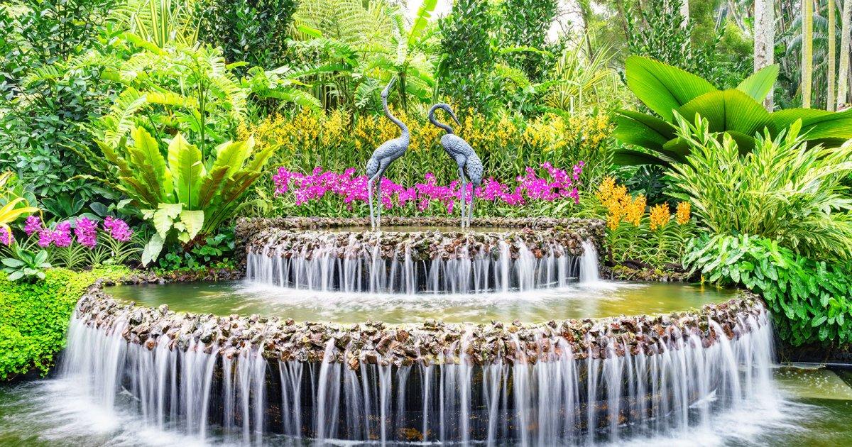 Resultado de imagen de Jardín Botánico de Singapur